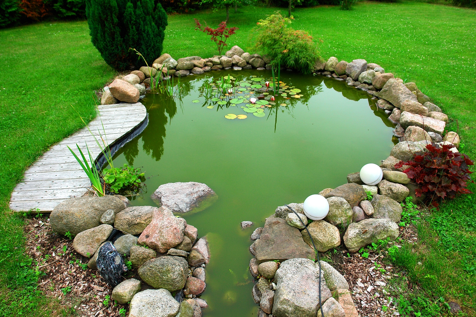 an advice on creating a pond Expert advice andrew horner even created a website for companies to apply to be his employer act like a duck an authentic, curious conversation in a duck pond is the most effective way to connect with the people who can help you out.